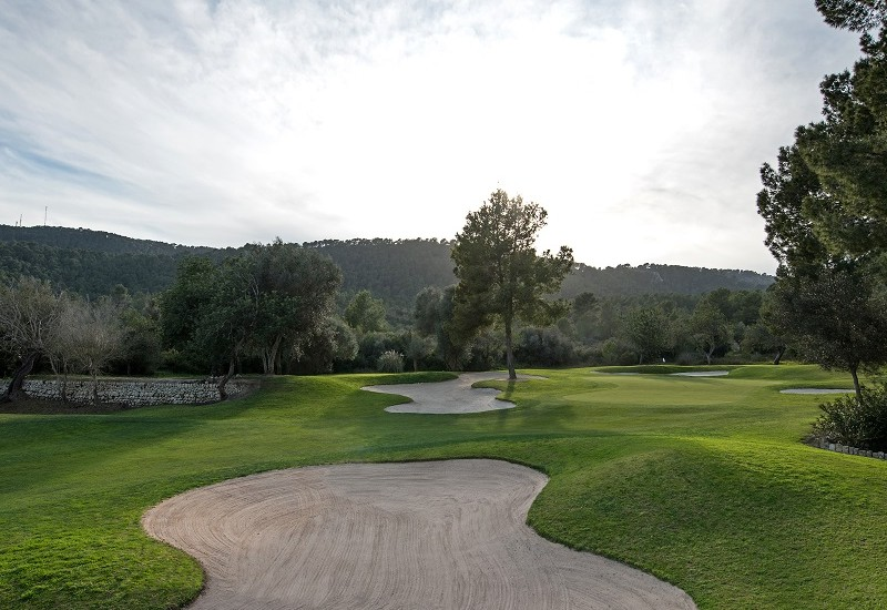 Learn more about Golf Son Muntaner